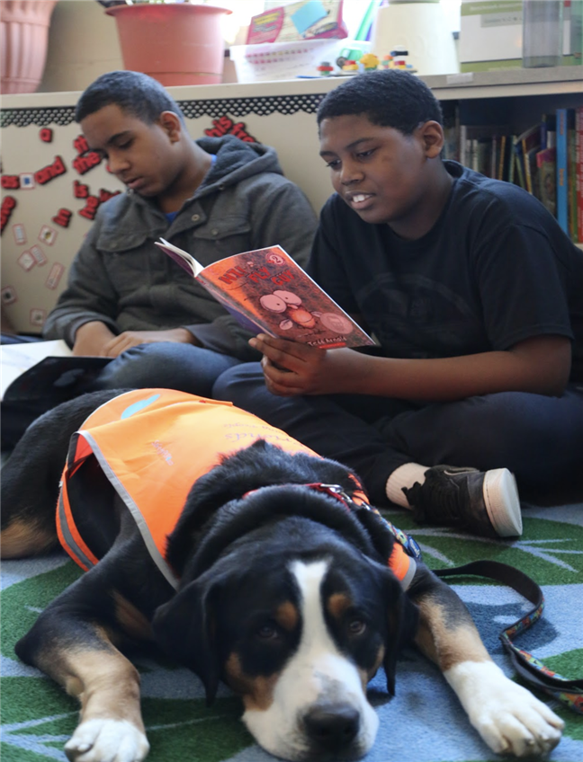 THERAPY DOGS BEING READ TO
